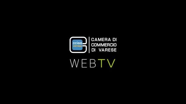 Video: Il tgWeb della Camera di commercio