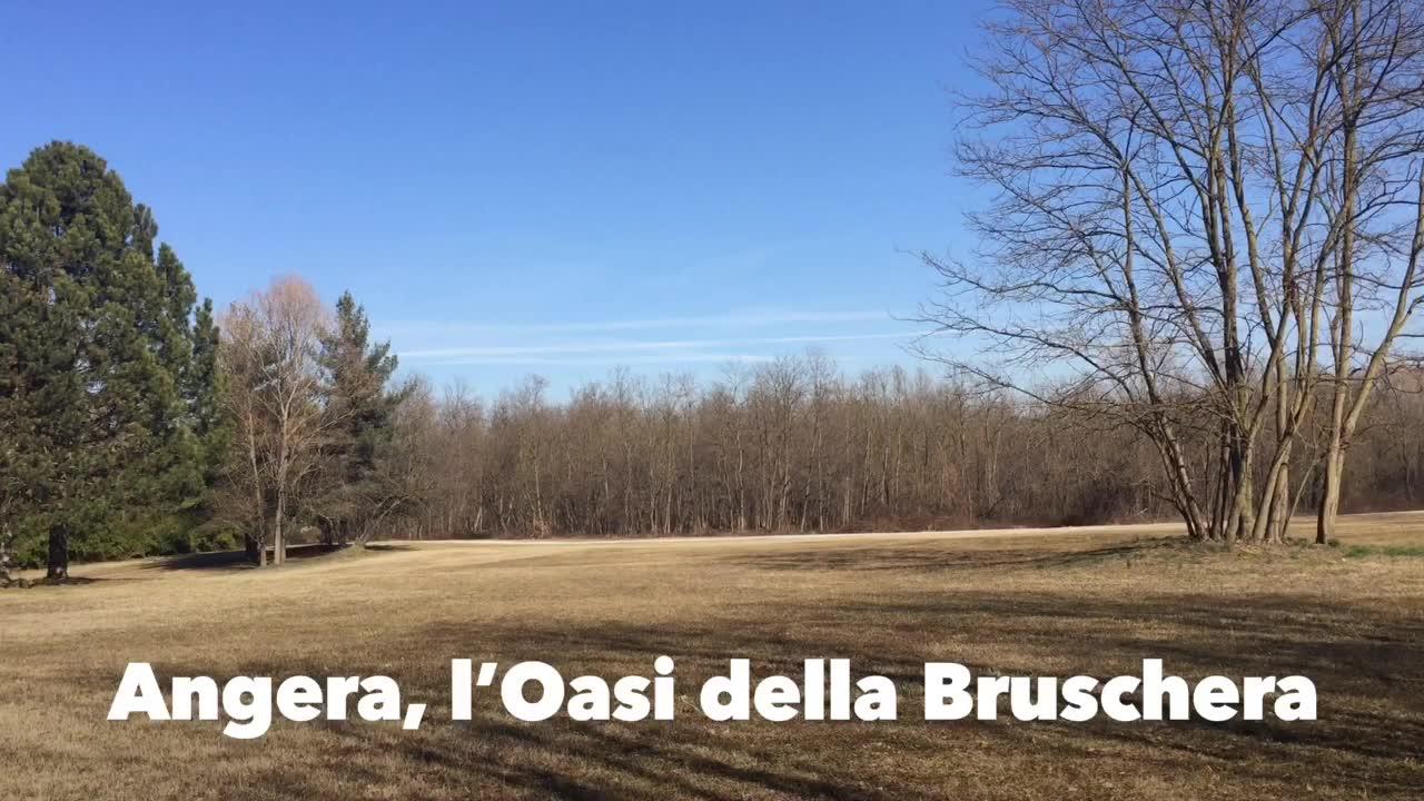 Video: L'Oasi della Bruschera