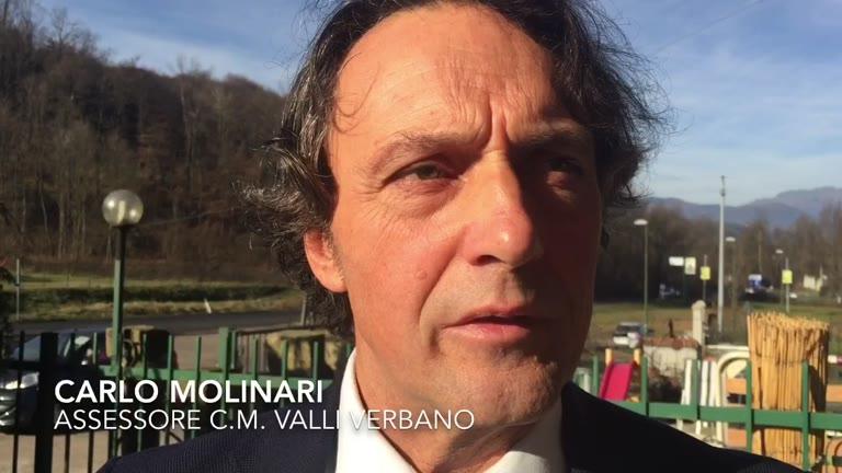 Video: In primavera i semafori per gli animali in Valcuvia