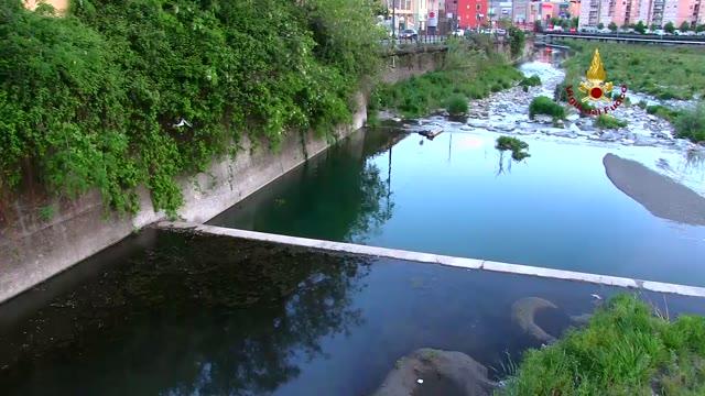Video: San Quirico, sversamento idrocarburi nel Polcevera