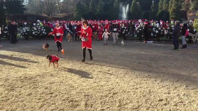 Video: La corsa dei babbo Natale a Varese