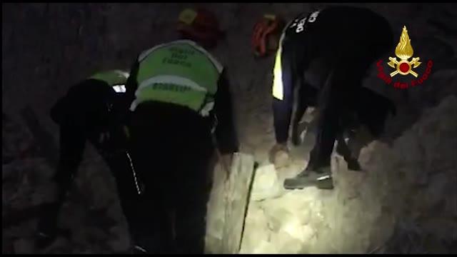 Video: Cane salvato dalle macerie del terremoto