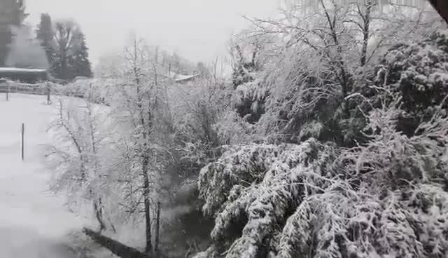 Video: La neve a Monvalle