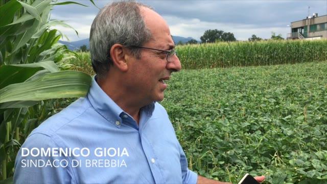 Video: Un paese rinato grazie ai fagioli