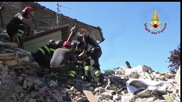 Video: Il salvataggio di un cane 9 giorni dopo il terremoto
