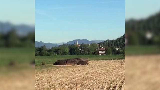 Video: Una granata fatta brillare nei campi