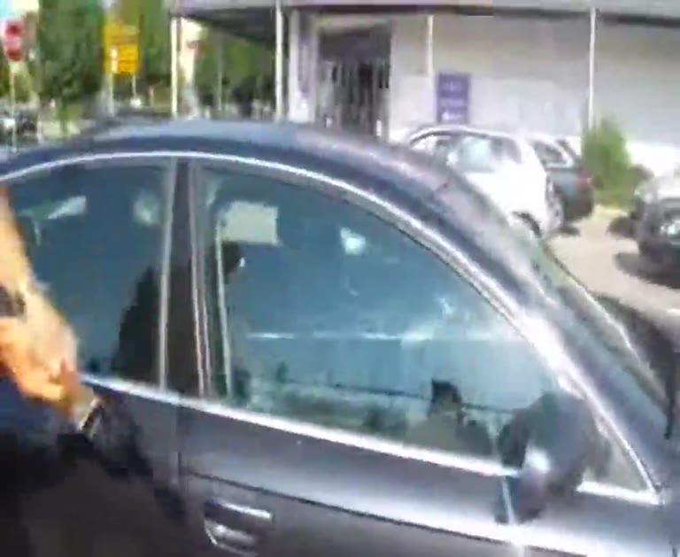 Video: Il cane dimenticato in auto