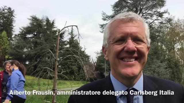 Video: Il birrificio Poretti regala un faggio a Villa Mylius