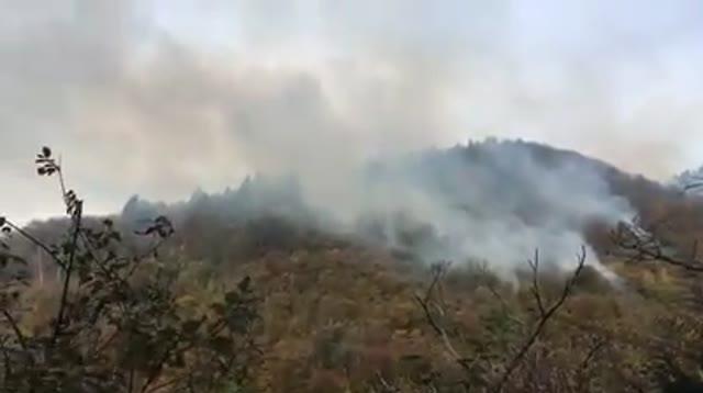 Video: L'incendio al Campo die Fiori domenica mattina
