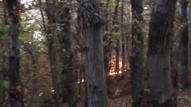 Video: Le fiamme lungo il costone della montagna