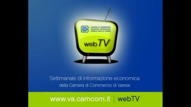 Video: Export e occhialeria nel TgWeb della Camera di Commercio di Varese