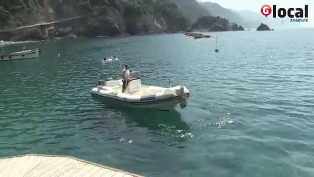 Video: Le Cinque Terre viste dal mare