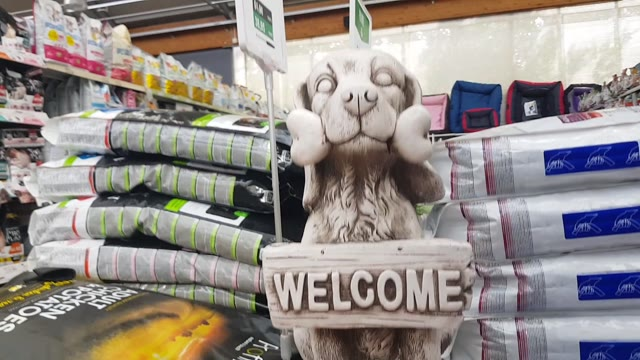 """Video: Come è cambiato il mercato del """"pet"""""""