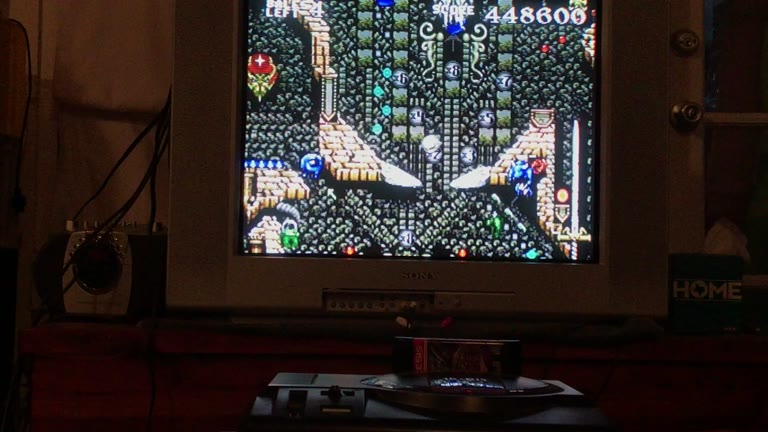 Sega Genesis / Sega Mega Drive - Dragon's Revenge - NTSC - Points - 28,866,600 - Sean Dwyer