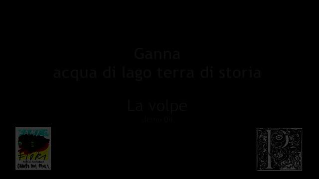 Video: L'incontro con una volpe nell'area di Ganna
