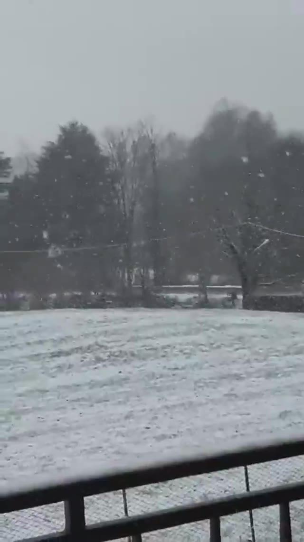 Video: Nevicata di fine febbraio