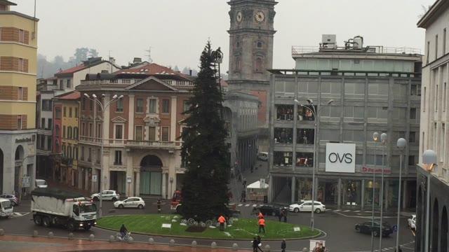 Video: L'addobbo dell'albero di Natale in piazza Montegrappa