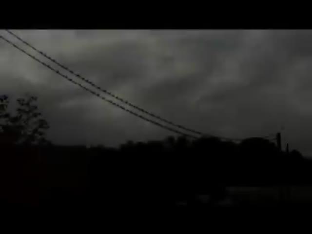 Video: La partenza delle rondini