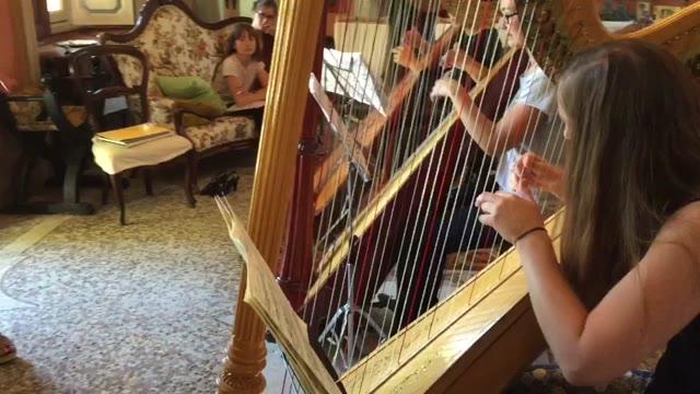 Video: Nove arpiste di tutt'Europa studiano a Villa Clerici