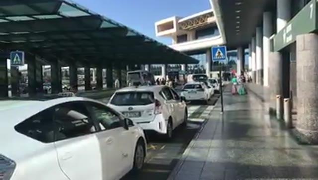 """Video: Selvaggia Lucarelli a Malpensa: """"13 taxi prima di trovarne uno con il pos"""""""